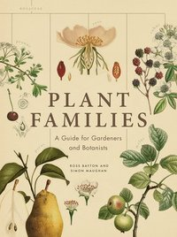 bokomslag Plant Families: A Guide for Gardeners and Botanists