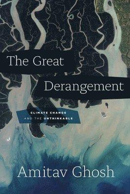 bokomslag Great derangement - climate change and the unthinkable