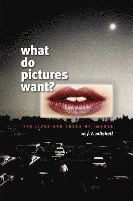 bokomslag What Do Pictures Want?: The Lives and Loves of Images