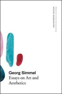 bokomslag Georg Simmel