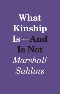 bokomslag What Kinship is - and is Not