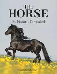 bokomslag The Horse