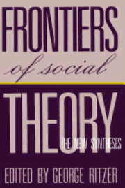 bokomslag Frontiers of Social Theory