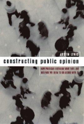 bokomslag Constructing Public Opinion