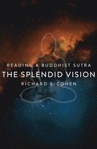 bokomslag The Splendid Vision