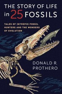 bokomslag The Story of Life in 25 Fossils: Tales of Intrepid Fossil Hunters and the Wonders of Evolution