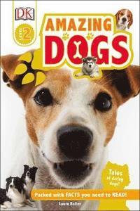 bokomslag Amazing Dogs