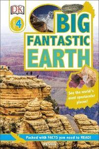 bokomslag Big Fantastic Earth