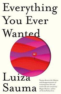 bokomslag Everything You Ever Wanted