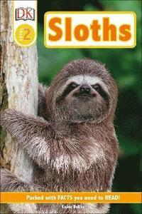 bokomslag Sloths