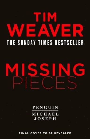 bokomslag Missing Pieces