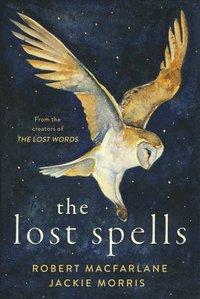 bokomslag The Lost Spells