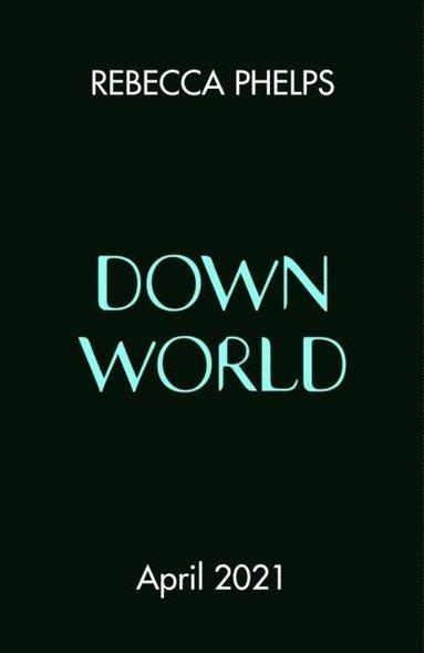 bokomslag Down World