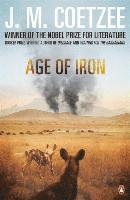 bokomslag Age of Iron