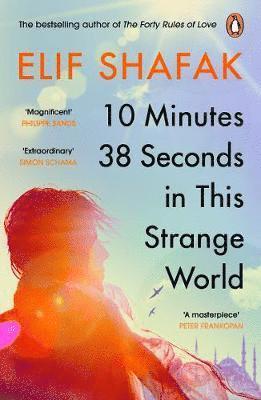 bokomslag 10 Minutes 38 Seconds in this Strange World