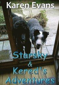 bokomslag Starsky &; Kered's Adventures