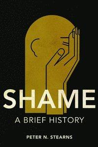 bokomslag Shame: A Brief History