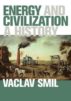 bokomslag Energy and civilization - a history