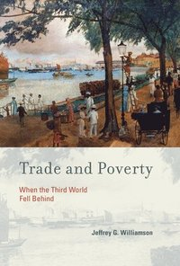 bokomslag Trade and Poverty: When the Third World Fell Behind