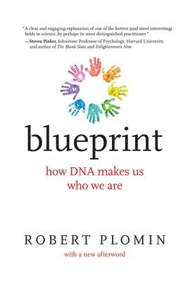 bokomslag Blueprint