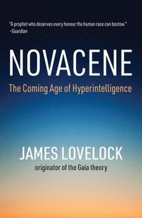 bokomslag Novacene: The Coming Age of Hyperintelligence