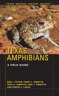 bokomslag Texas Amphibians