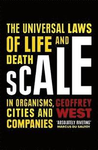 bokomslag Scale: The Universal Laws of Life and Death in Organisms, Cities and Companies