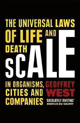 bokomslag Scale
