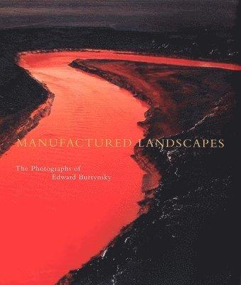 bokomslag Manufactured Landscapes