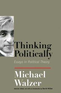 bokomslag Thinking Politically