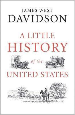 bokomslag Little history of the united states