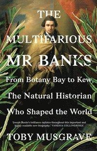 bokomslag The Multifarious Mr. Banks