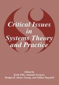 bokomslag Critical Issues in Systems Theory and Practice