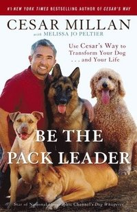 bokomslag Be the Pack Leader: Use Cesar's Way to Transform Your Dog... and Your Life