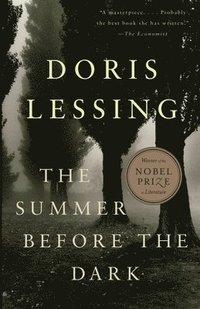 bokomslag The Summer Before the Dark