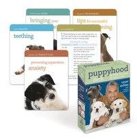 bokomslag Puppyhood Deck: 50 Tips for Raising the Perfect Dog