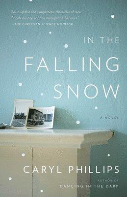 bokomslag In the falling snow