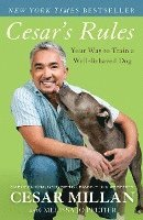 bokomslag Cesar's Rules: Your Way to Train a Well-Behaved Dog