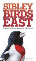bokomslag The Sibley Field Guide to Birds of Eastern North America