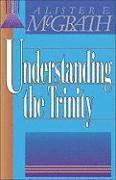 bokomslag Understanding the Trinity