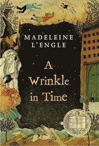 bokomslag Wrinkle In Time