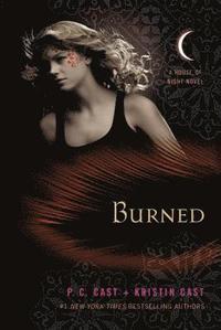 bokomslag Burned