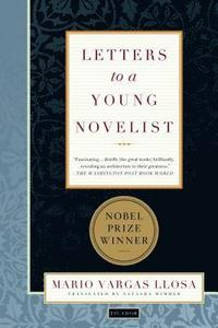 bokomslag Letters to a Young Novelist