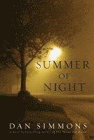 bokomslag Summer Of Night