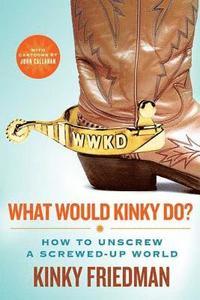 bokomslag What Would Kinky Do?