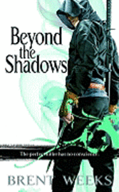 bokomslag Beyond the Shadows