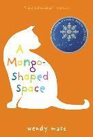 bokomslag Mango-shaped Space