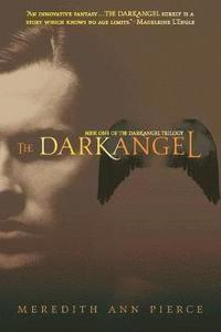 bokomslag The Darkangel