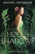 bokomslag House of Shadows