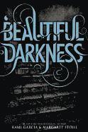 bokomslag Beautiful Darkness